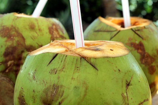 obat panas dalam tradisional ibu hamil - air kelapa